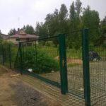 IMG_3511
